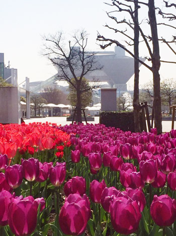 春爛漫の世界にうかぶ東京ビッグサイト